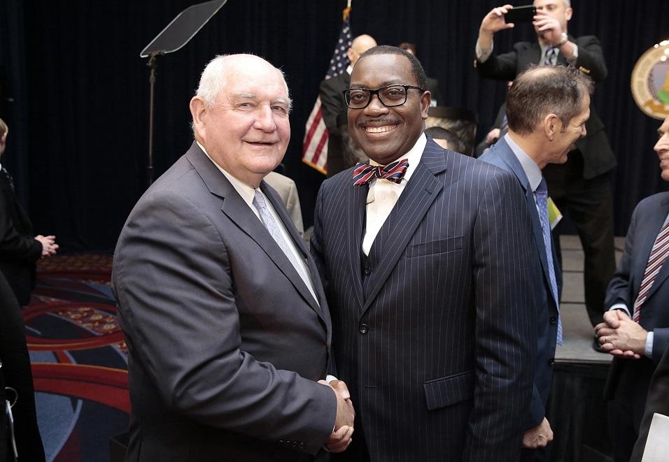 Investissements agriculture Afrique : Akinwumi Adesina plaident devant des investisseurs américains