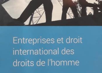 Entreprises et droit international des droits de l'homme : Session de formation René Cassin et Friedrich Naumann
