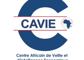 Le CAVIE organise à Ouagadougou un séminaire international de formation à l'intelligence économique