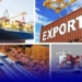 Sénégal : Hausse de 43,6% des exportations en juillet 2019 (ANSD)