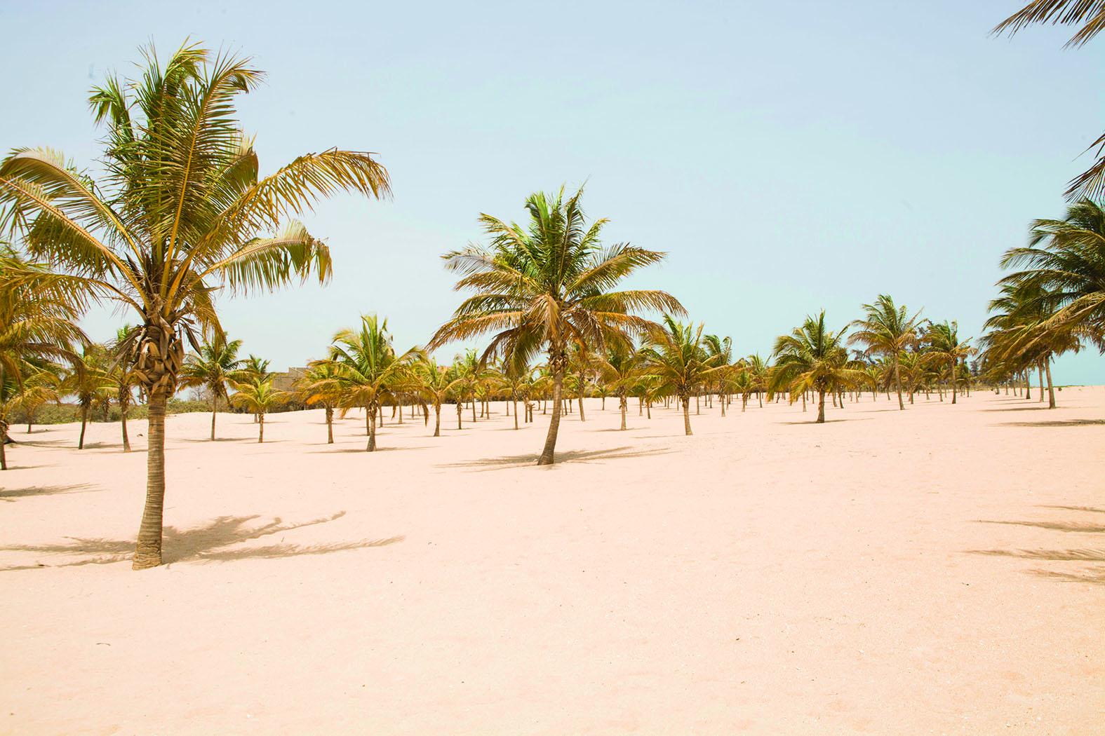 Pointe Sarène : les atouts d'une station balnéaire de rêve