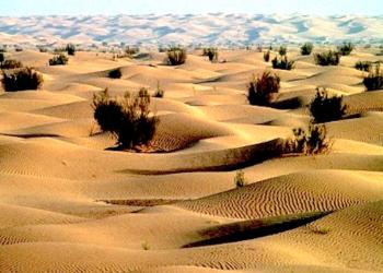 Sécheresse et dégradation des sols: l'ONU tire la sonnette d'alarme