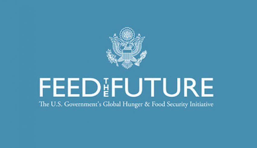 Le Sénégal désire attirer en cinq ans, 22 000 jeunes dans le secteur agricole