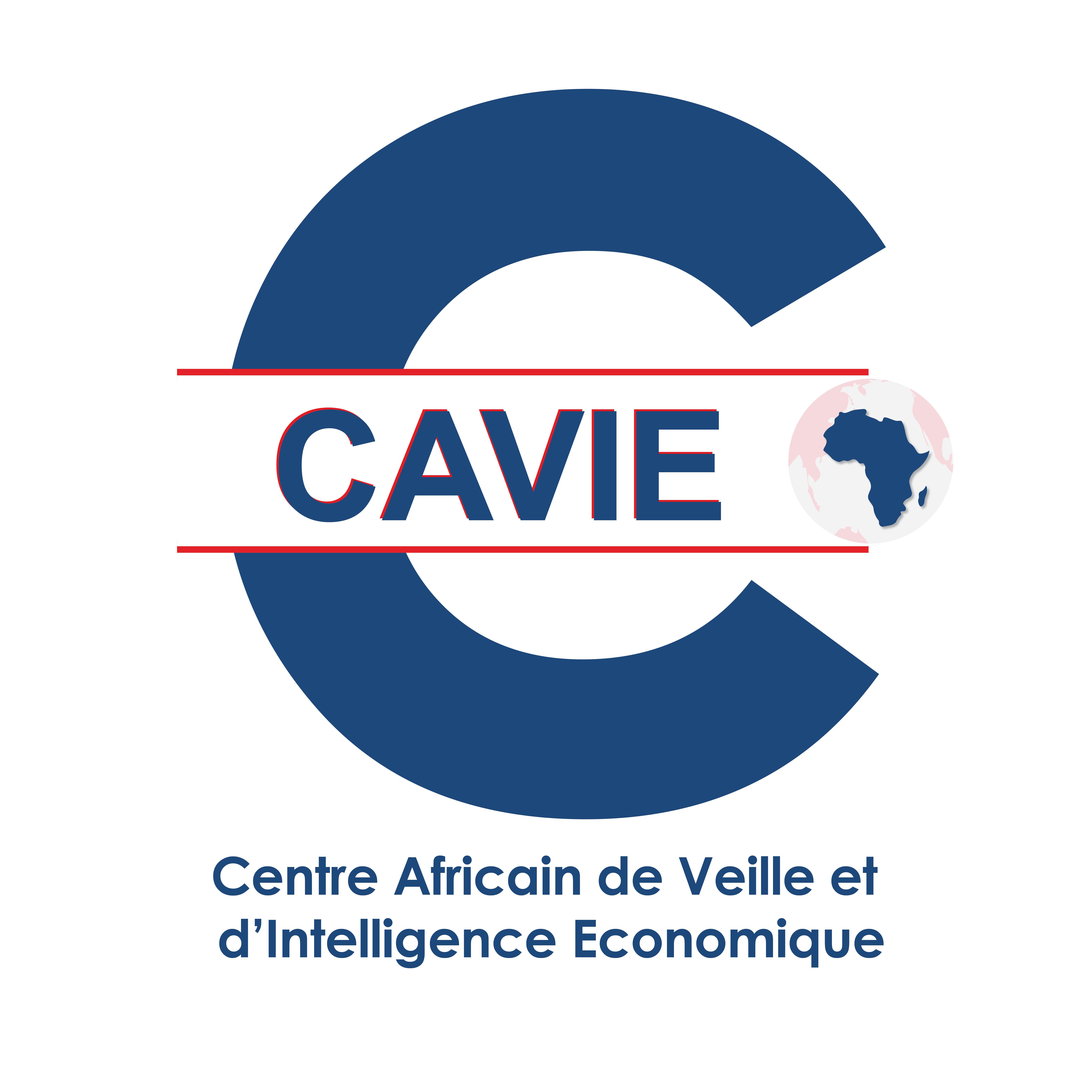 Le CAVIE organise à Ouagadougou un séminaire international de formation à l'intelligence économique