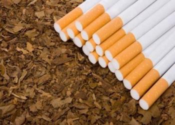 Le tabac de contrefaçon fait perdre par an 10 milliards dollars à l'Afrique subsaharienne