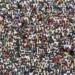 Sénégal :   Plus de 16 millions d'habitants en 2019, la population gonfle